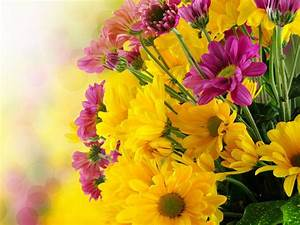 Beautiful Flowers Bouquet With Yellow And Purple Green