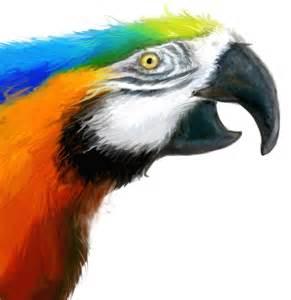 Blue Parrot Bird Talking
