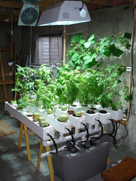 17 best ideas about indoor hydroponics on