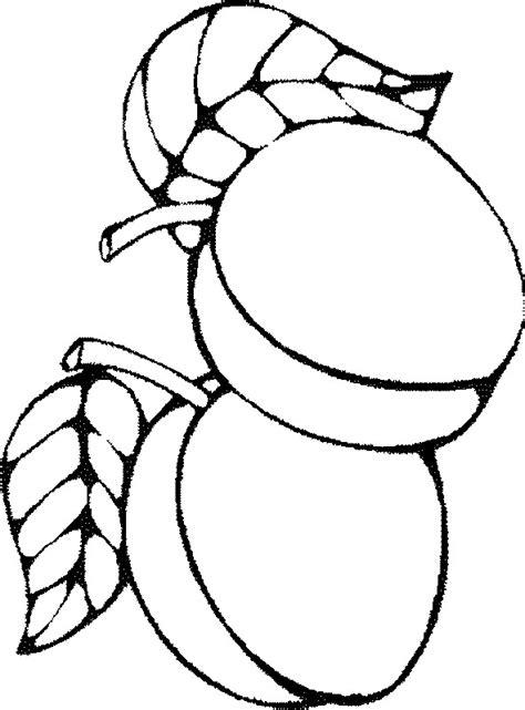 colorare frutta disegno due albicocche