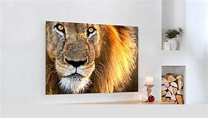 Cewe Alu Dibond : wandbilder selbst gestalten online erstellen cewe ~ Orissabook.com Haus und Dekorationen