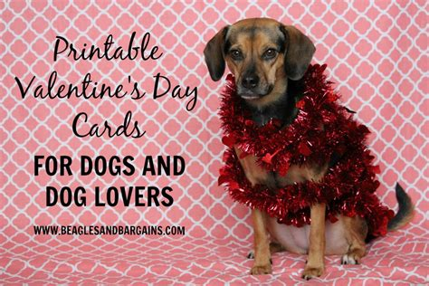 Maybe you would like to learn more about one of these? Printable Valentine's Day Cards for Dogs and Dog Lovers | Valentines printables, Valentine day ...