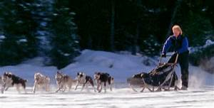 Sled Dogs: An Alaskan Epic | About | Nature | PBS