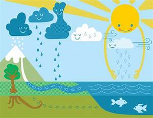 5b  The Water Cycle