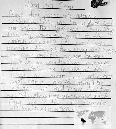 2nd Grade Writing  The Educators' Spin On It