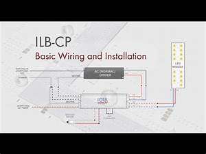 Pin Out Wiring Diagram