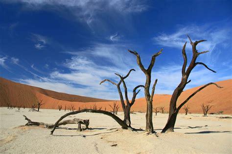 water salt sossusvlei deadvlei namibia amazing places