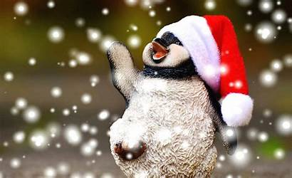 Holiday Linux Holidays Penguin Amusements Essential Penguins