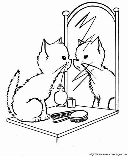 Mirror Kitten Coloring Cats Browser Ok Internet
