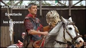 Le Paddock Amneville : zoo amneville spectacle rapacesvisite amneville guide visite amneville guide ~ Melissatoandfro.com Idées de Décoration