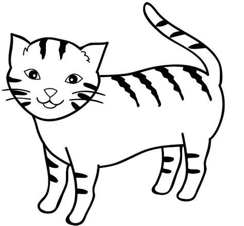 belajar mewarnai gambar kucing