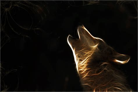 Wolf Wallpapers Hd  Wallpaper Cave