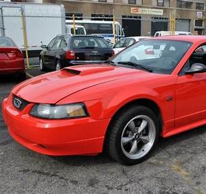 Mustang Gt Hood Scoop 1999 00 01 02 03 04 Hs001