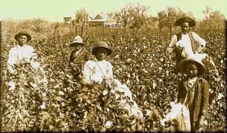 Cotton Plantation Slaves