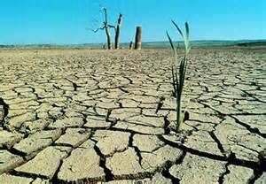 Resultado de imagen de imagenes de la desertificacion