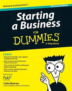U0026 39 Starting A Business For Dummies U0026 39  Book Customised For Fsb