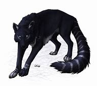 best anime female wolf ideas and images on bing find what you ll