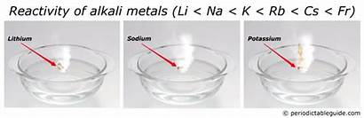 Metals Alkali Common Elements Properties Same Water