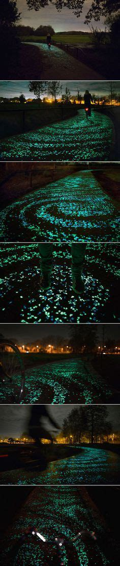 Glow in the Dark Path Markers | Landscape lighting, Pure ...