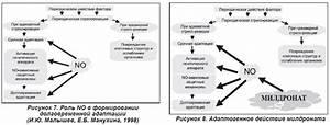 Роль медсестры в лечении пациентов с гипертонической болезнью