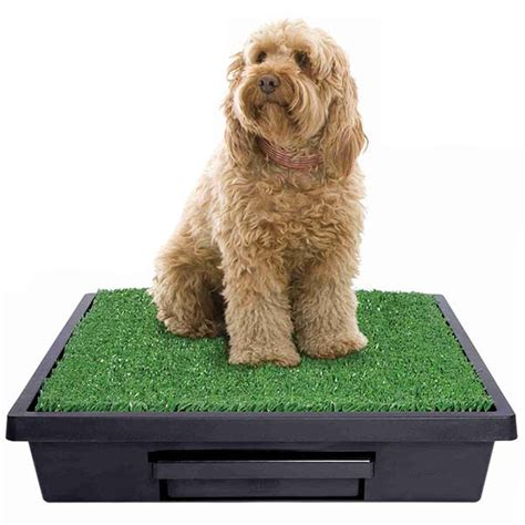 Dog Wee Carpet by The Pet Loo Medium Size Mini Wee Portable Dog Toilet