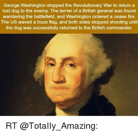 Revolutionary War Memes - george washington stopped the revolutionary war to return a lost dog to the enemy the terrier of