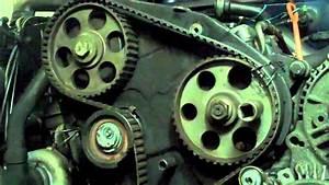 Vw Tdi Timing Belt Diagram  Vw  Free Engine Image For User