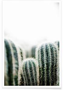 Polaroid Bilder Bestellen : die besten 25 polaroid bilder ideen auf pinterest polaroid polaroidideen und basteln mit ~ Orissabook.com Haus und Dekorationen