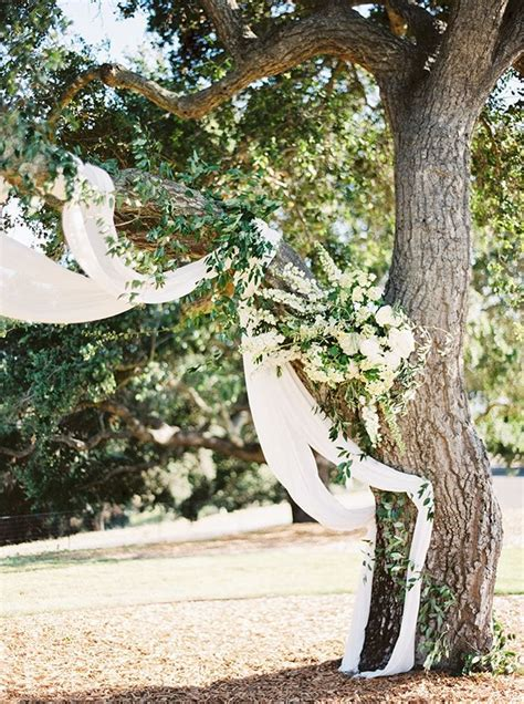sun soaked summertime wedding  california tree wedding