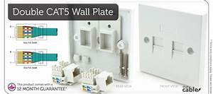 Double Cat5e Wall Outlet Face Plate