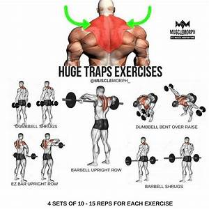 Want Bigger Traps  Try This Workout Like If You Found This Useful And Follow  Musclemorph  F
