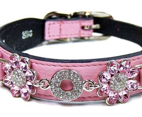 Daisy Diamonds Luxury Leather Dog Collars