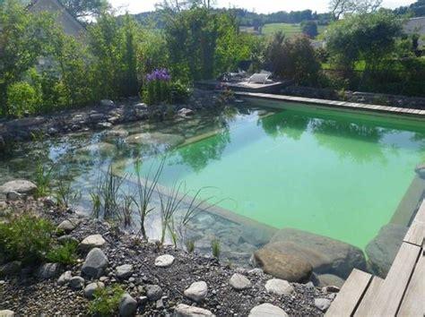 Schwimmteich Gebaut Von Teichbau Schweiz Schwimmteich