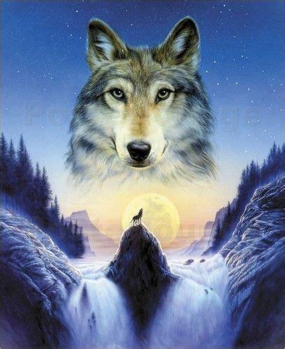 andrew farley der einsame wolf wolf hintergrundbild