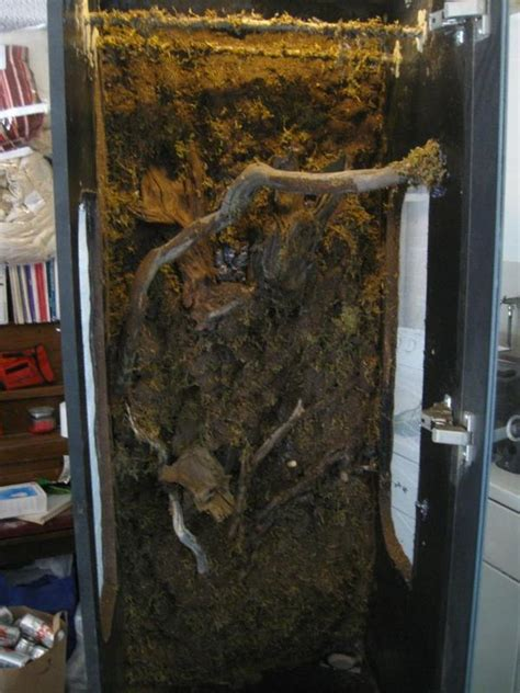 100 detolf glass door cabinet beech furniture ikea
