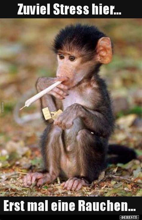 zuviel stress hier erst mal eine rauchen lustige