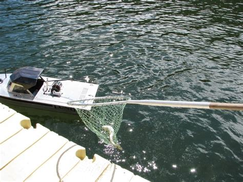 Real Rc Fishing Boat by Rc Fishing Machine