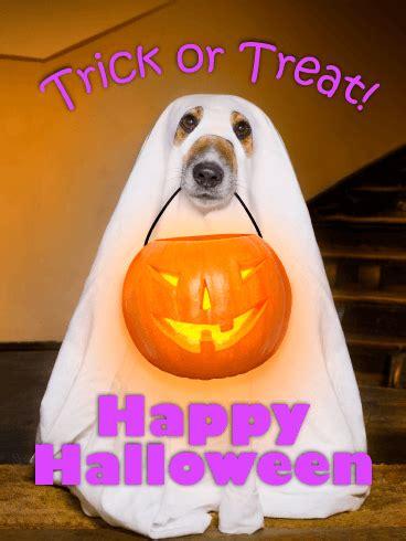 ghost dog happy halloween card birthday greeting cards