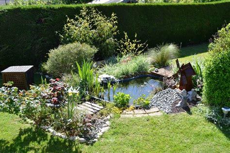 petit bassin de jardin mamzelle didounne76 mon petit bassin de jardin photos page 2 aquariophilie org