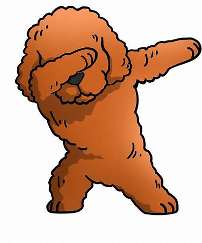 Poodle Clipart Bear Teddy Mix Toy Clipground