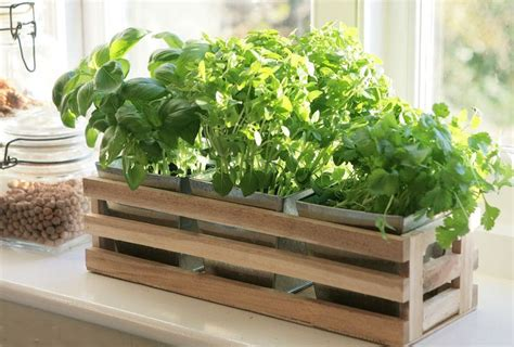 indoor window sill planter box interior design ideas