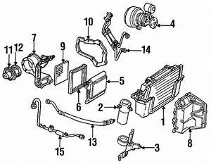 Corvette Evaporator Core Seal  1984