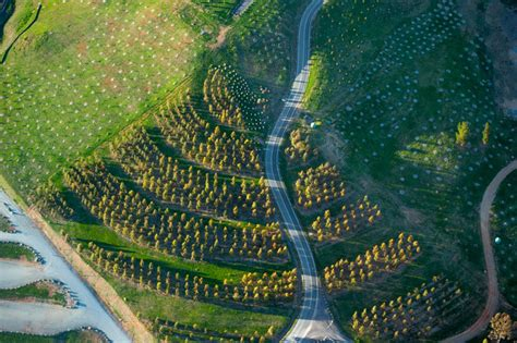 Future Forecasting Landscape Architects Might Save The World