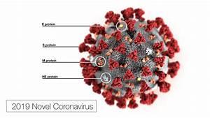 Covid-19 Stem Cell Trials Pile Up During Novel Coronavirus Outbreak