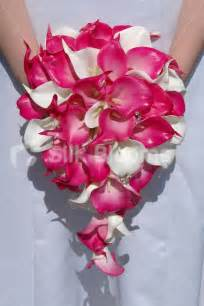 shop modern vibrant bridal bouquet with fuchsia white