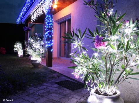 d 233 co jardin pour noel exemples d am 233 nagements