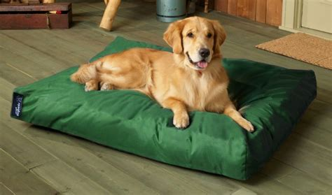 Indestructable Beds by Large Rectangle Memory Foam Bed