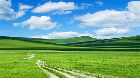 绿色好心情,锁屏图片,高清手机壁纸,艺术风景-回车桌面