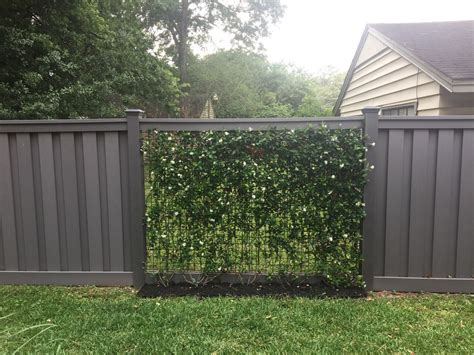 vines growing  wire mesh panels  winchester grey trex fencing fence deck supply