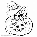 Pug Coloring Dog Printable Puppy Adult Halloween Cool Dogs Sheets Jack Lantern Coloringtop Corgi Pugs Pig Animals Popular Getdrawings Library sketch template
